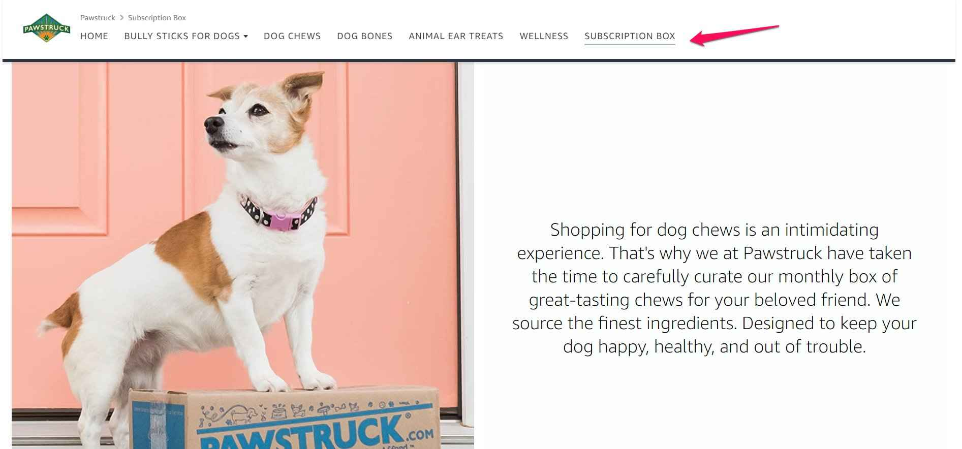 Amazon Storefront Example of Pawstruck showing off their subscription box tab as a single SKU promotion